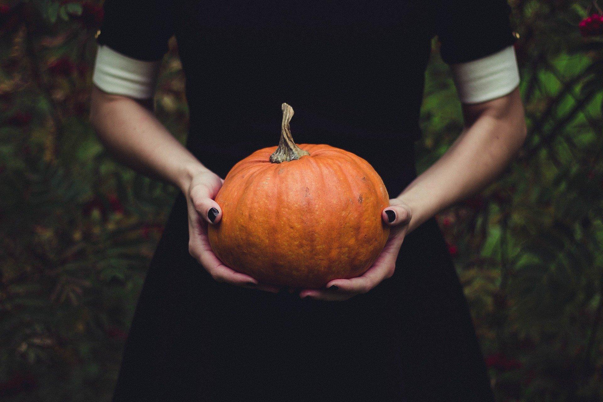 Dýně se hodí nejenom na Halloween
